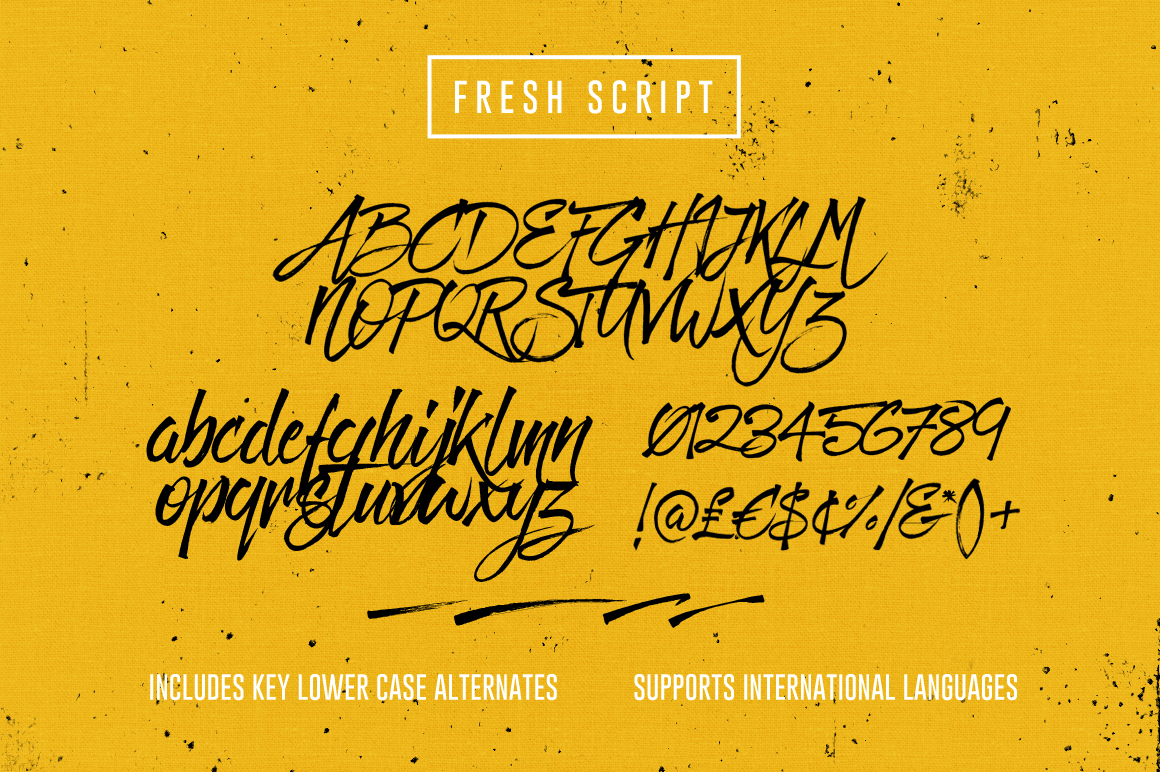 Fresh Script by Set Sail Studios